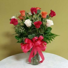 PF-256: Variety Color Roses