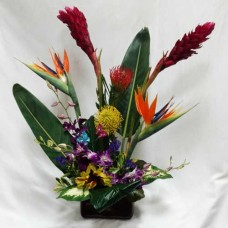 PF-900: Tropical Tenderness ($125.00)